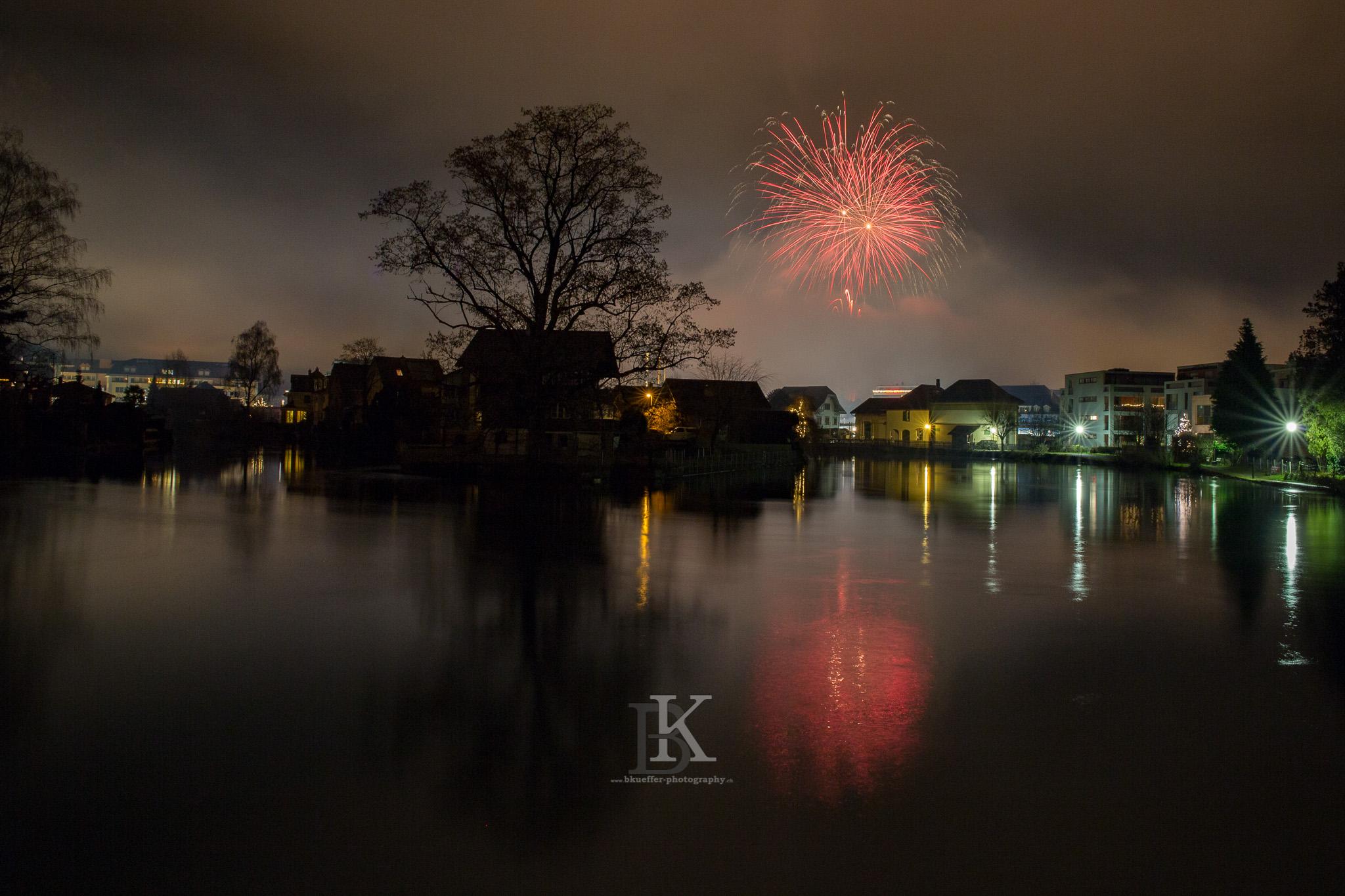 Feuerwerk01012016 (11 von 13)