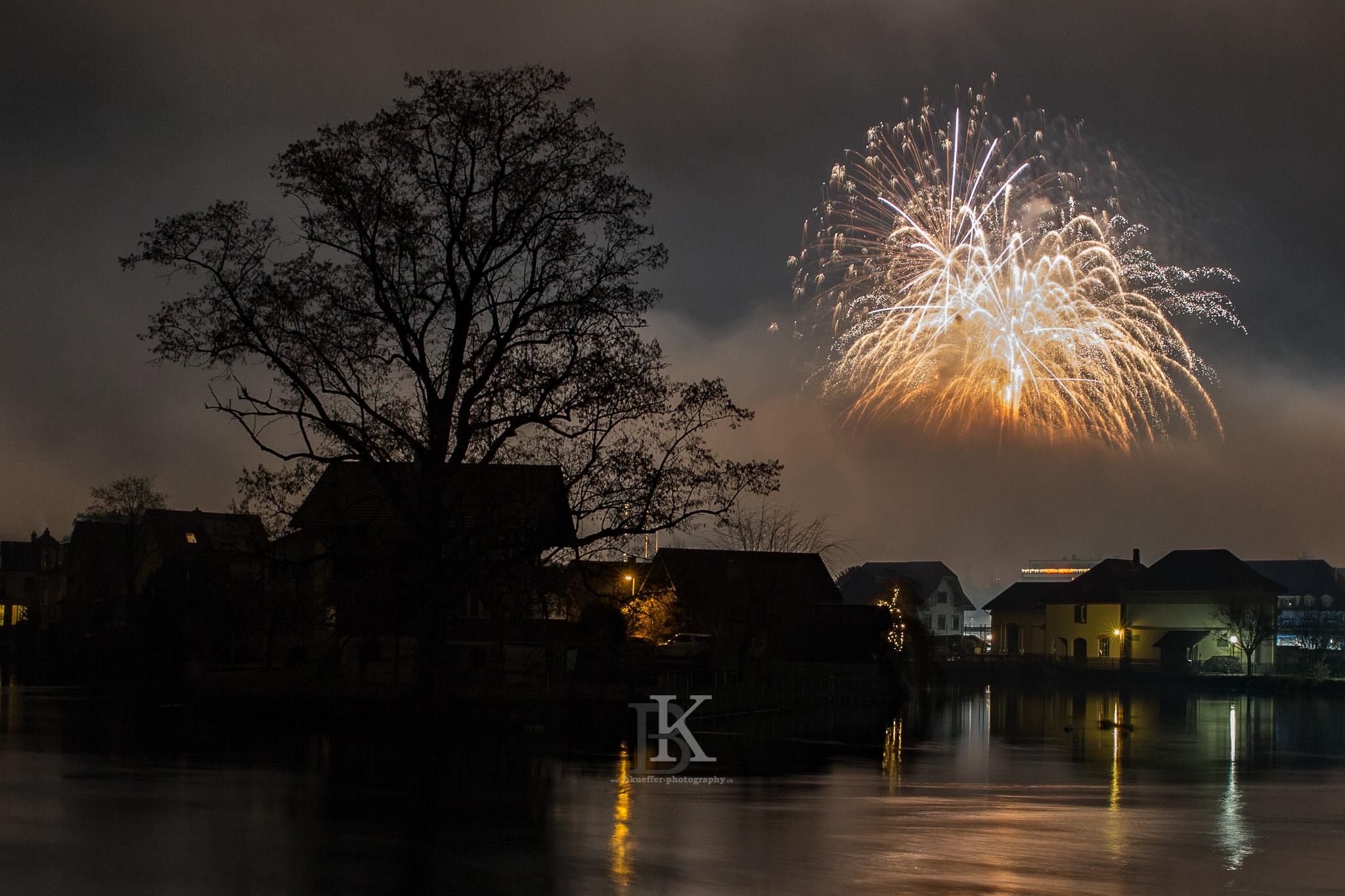 Feuerwerk01012016 (13 von 13)